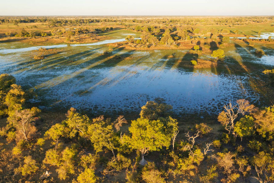 Safari Bostwana octubre