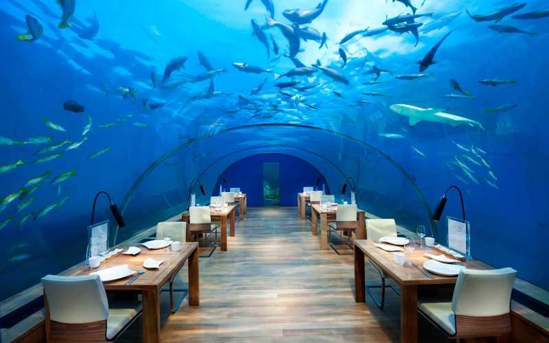 Conrad Maldives Rangali Island restaurante submarino