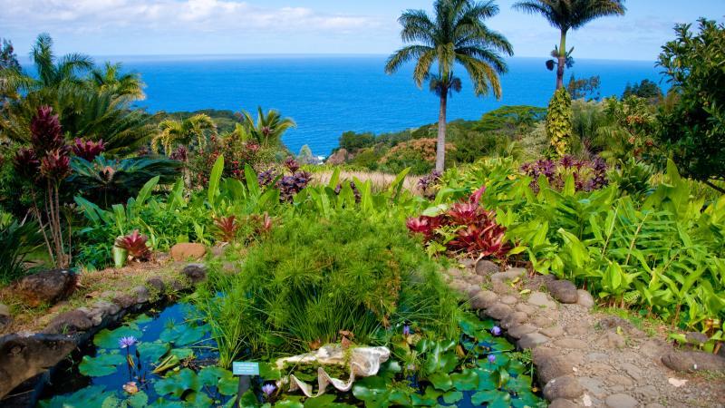 Maui - islas de hawaii