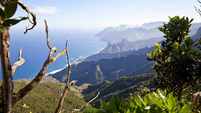 Tenerife - Islas Canarias