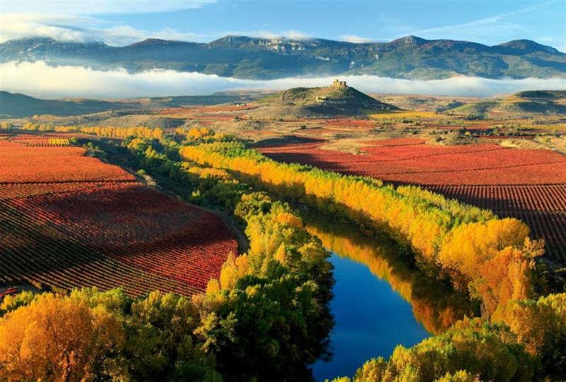 Viñedos La Rioja - lugares turisticos españa