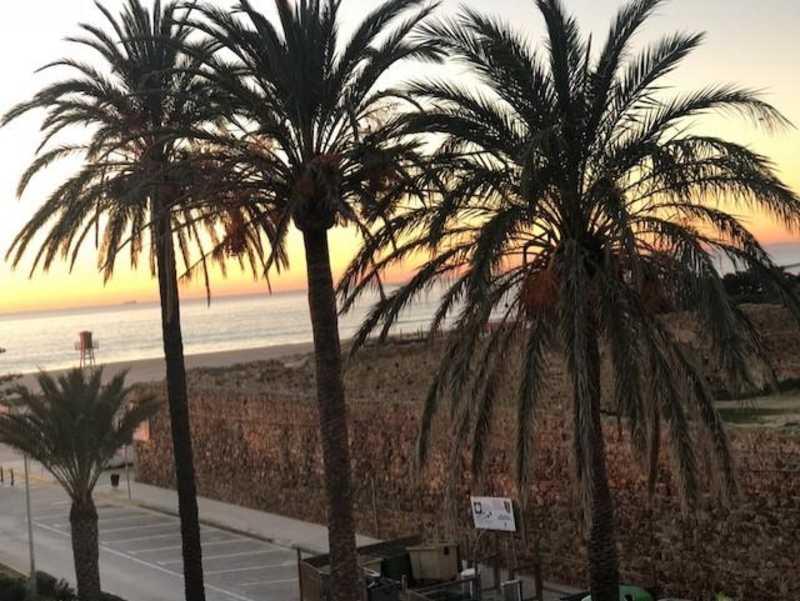 hotel avenida playa zahara