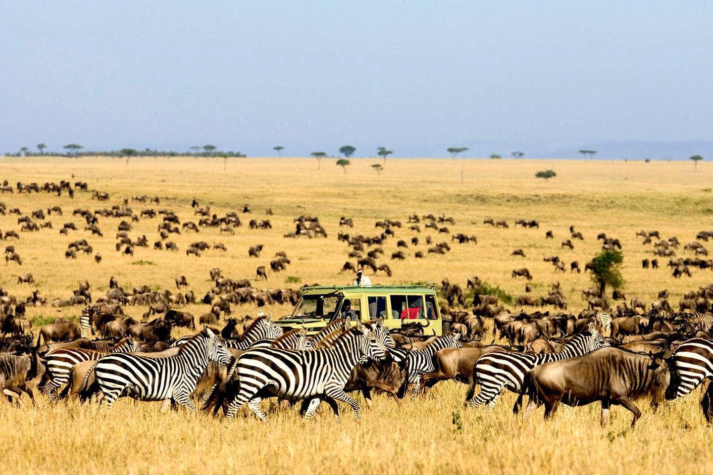 kenya destinos julio
